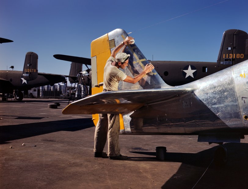 Mustang by the Tail: 1942