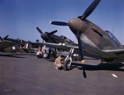 Mustang Ranch: 1942