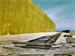 Yellow Rows of Texas: 1943