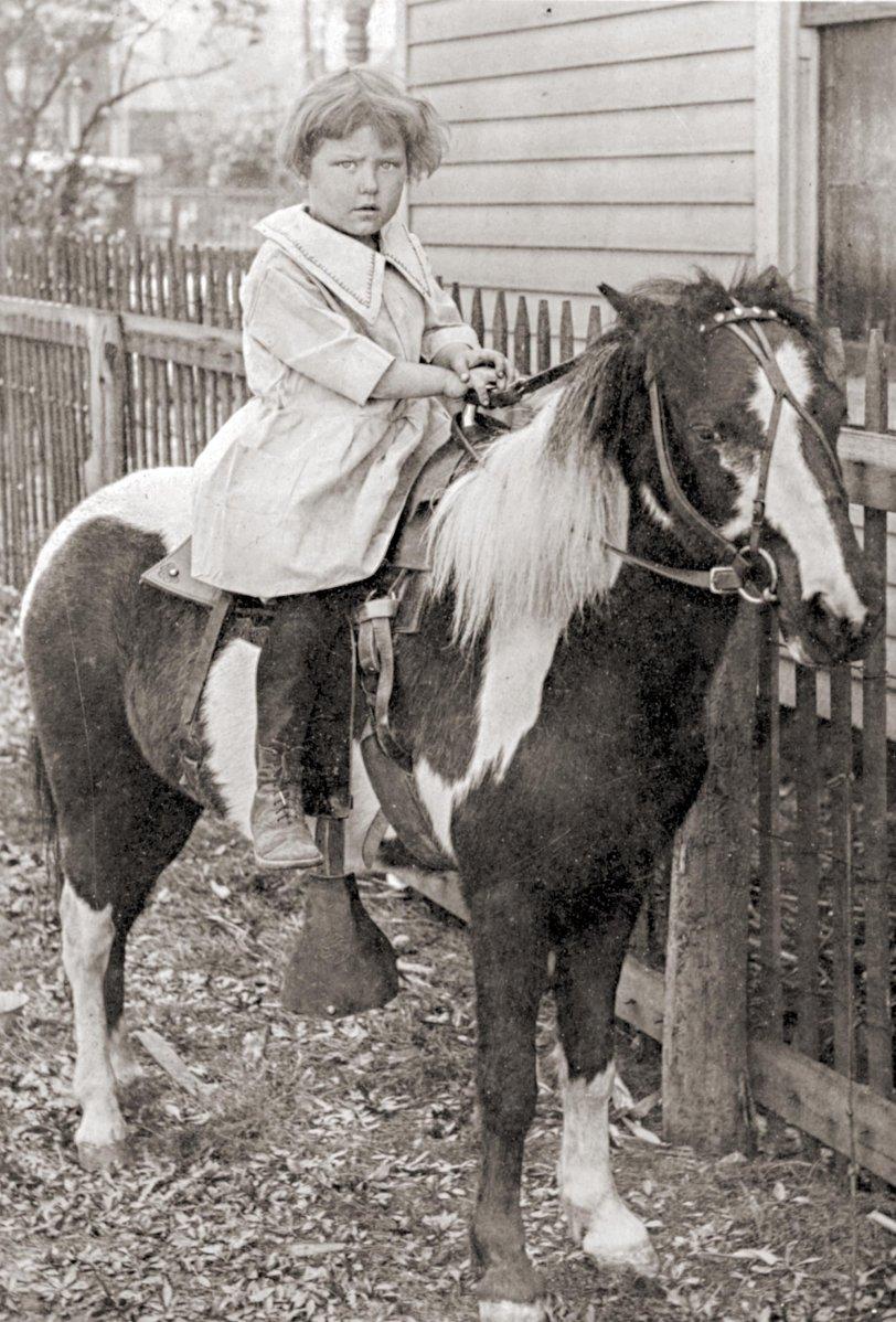 Birthday Pet Pony: 1898