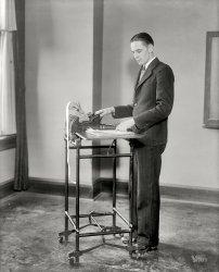 White Adder: 1928