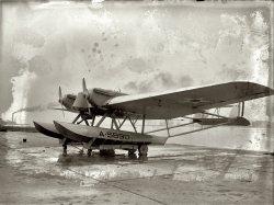 Pterodactyl: 1922