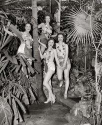 Figgy and Leggy: 1938