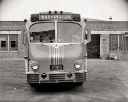Greyhound: 1938