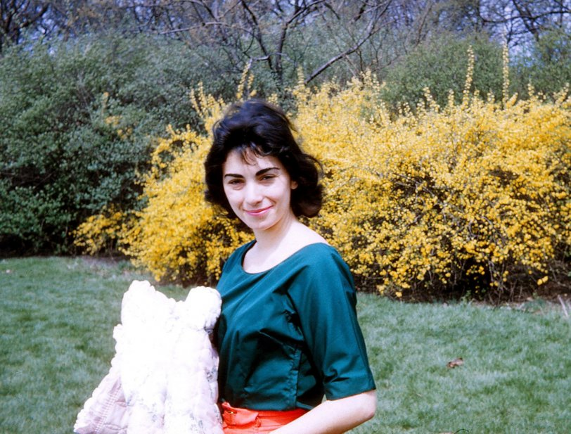 Louise Hurvitz: 1960