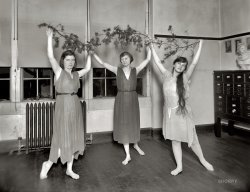 Loose-Limbed: 1919