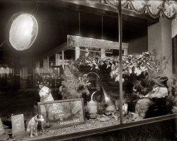 Moonshine: 1920