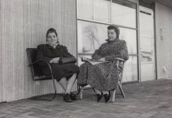Mothers in Levittown: 1957