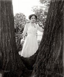 Della Storm: 1910