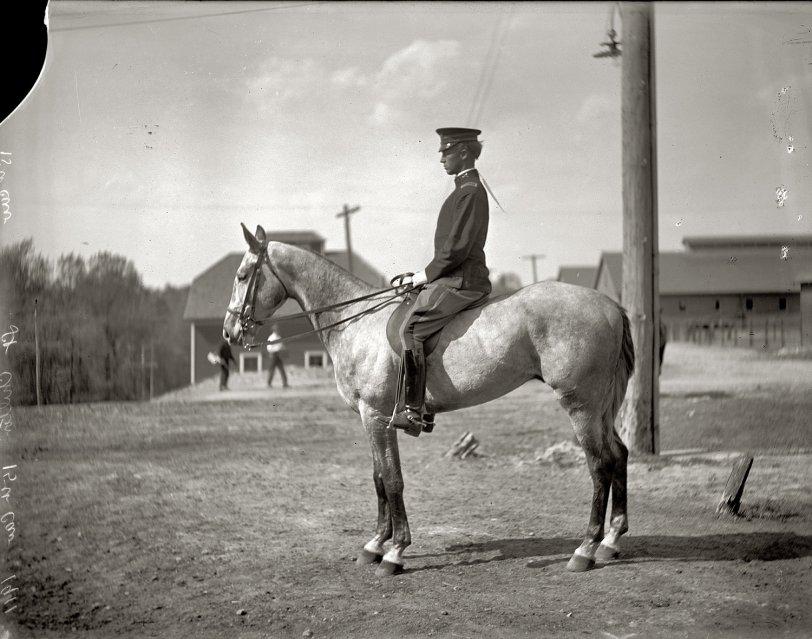 Alex Chilton: 1911