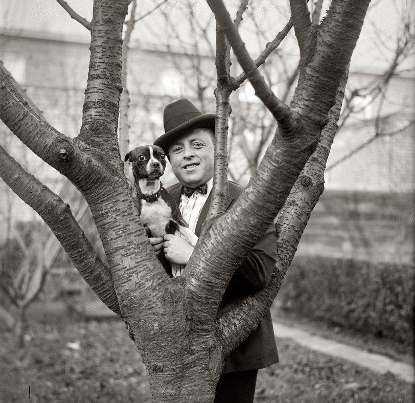 Dogwood: 1922