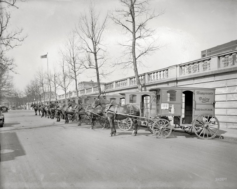 Thompson Dairy: 1927