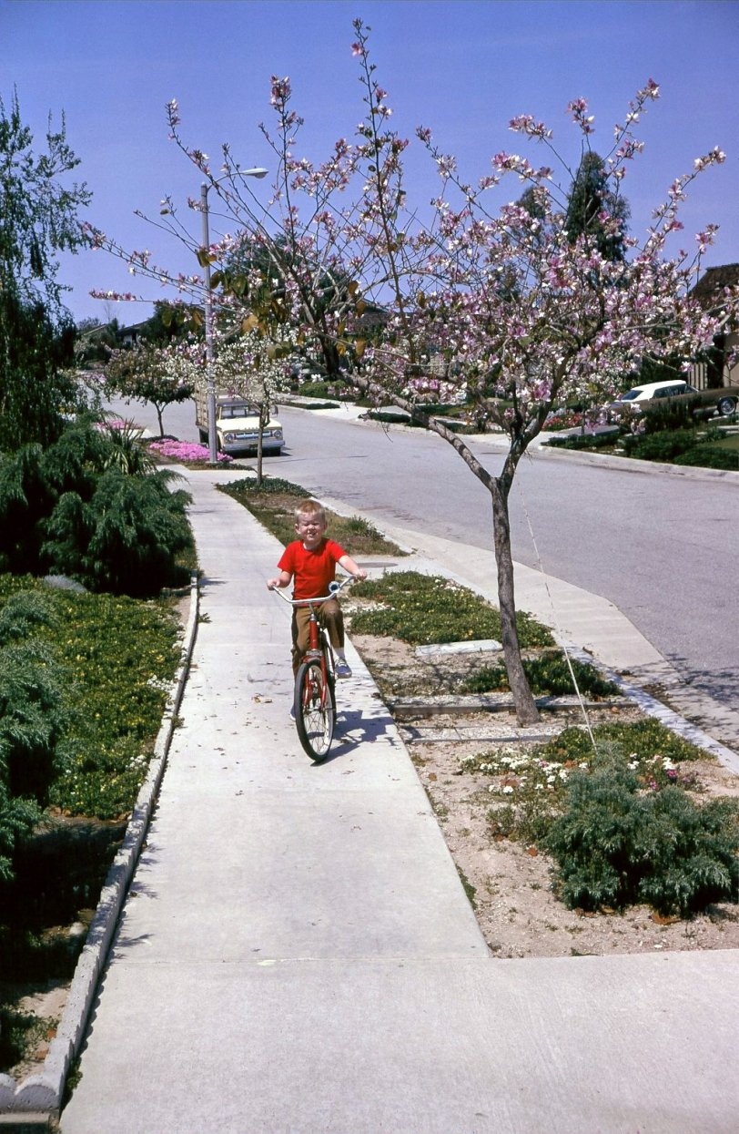 Biking in Suburbia: 1968