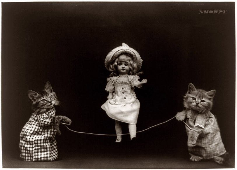 The Kittens of Doom: 1914