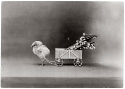 Best Easter Wishes: 1908