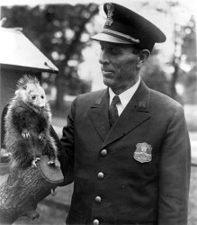 Officer Snodgrass: 1929