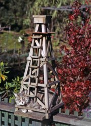 Tower of Cat: 1973