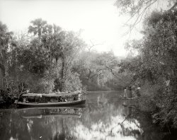 Nemo on the Tomoka: 1890s
