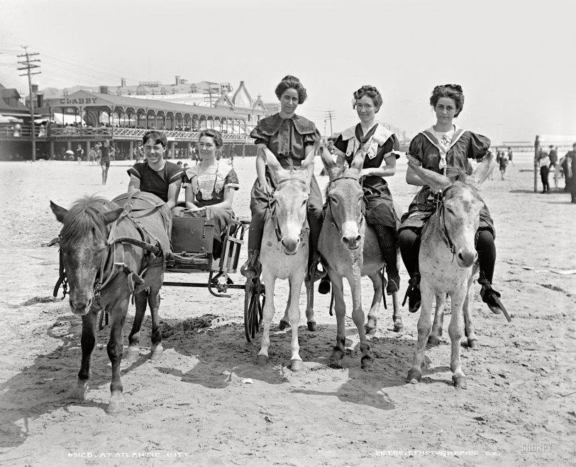 Beach Buggy: 1905
