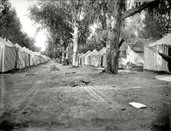 Mystery Tent Camp: 1903