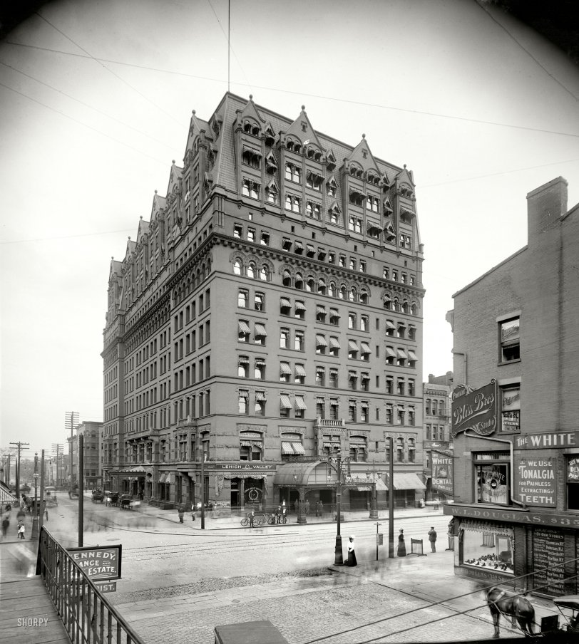 Buffalo Ghosts: 1900