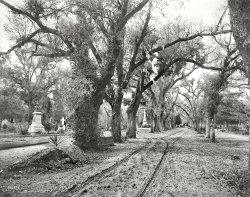 Last Stop: 1901