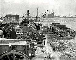 Blizzard Dump: 1899