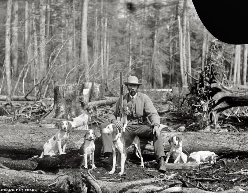 Eager for Deer: 1901