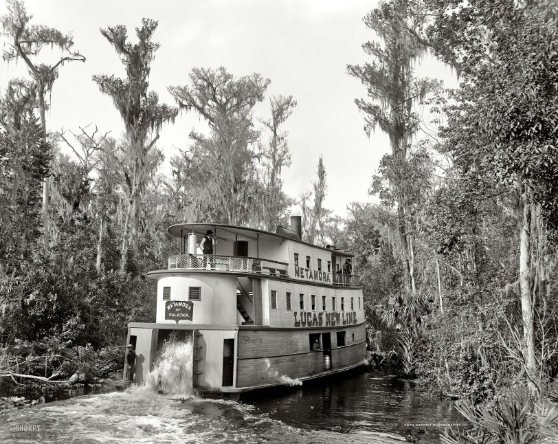 Metamora of Palatka: 1902