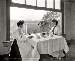 Working Lunch: 1902