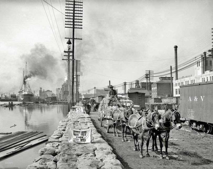 Levee Work: 1903