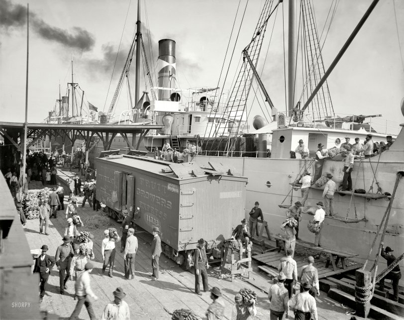 Banana Boat: 1903
