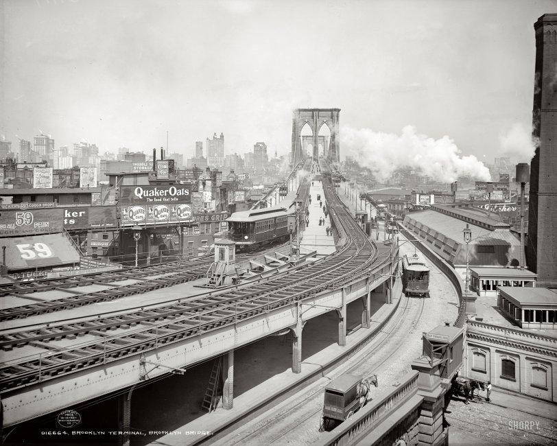 Brooklyn Terminal: 1903