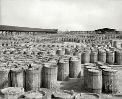 Piney Goods: 1904