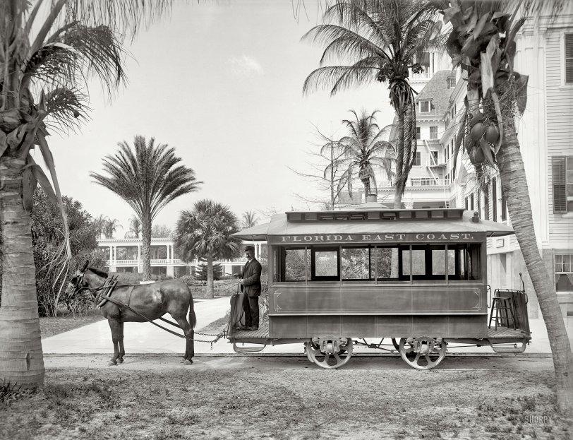 Palm Beach: 1905