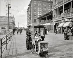 Dolly's Go-Cart: 1905