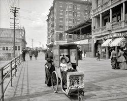 Dolly's Go-Cart: 1905