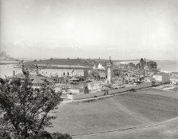 Magic Kingdom: 1905
