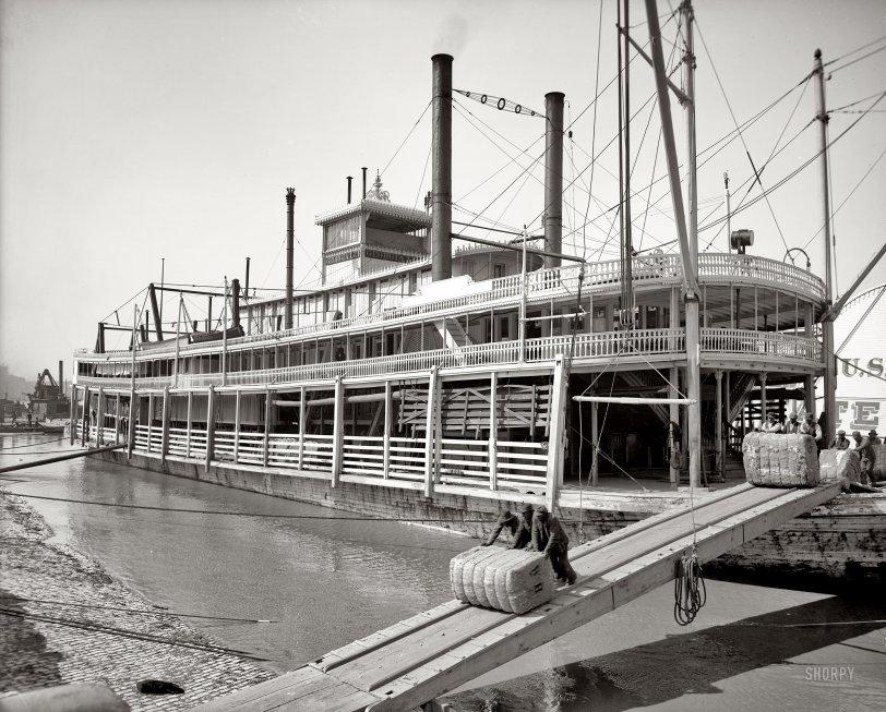 Georgia Lee: 1906
