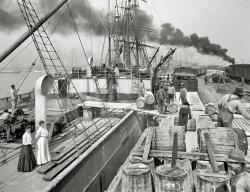 Gulfport: 1906