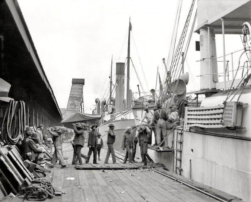Bamananas: 1906