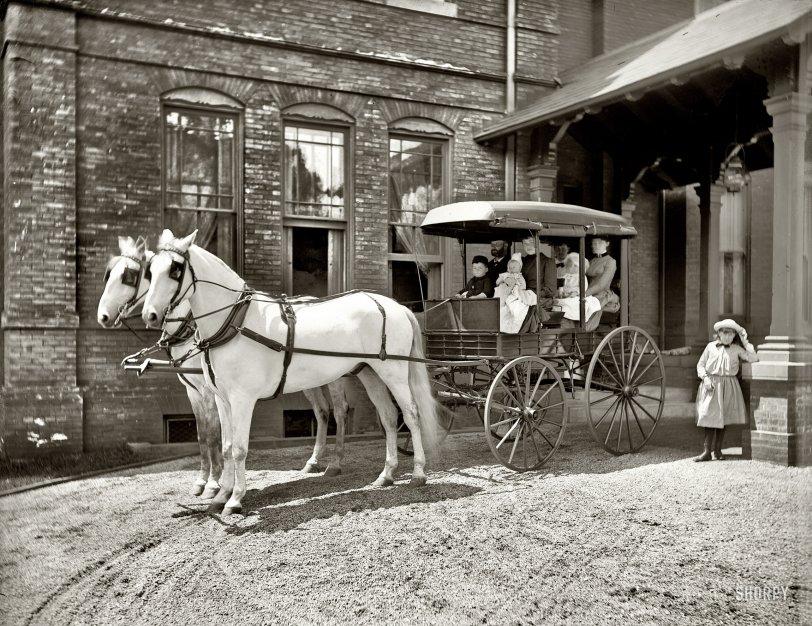 Modern Family: 1900