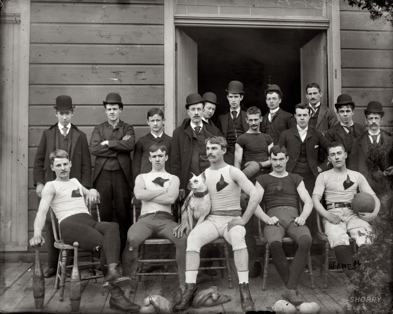Animal House: 1900