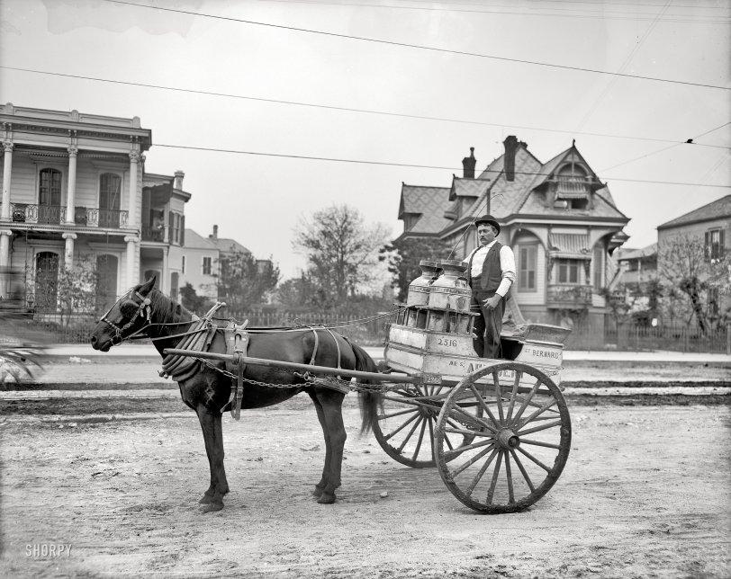 Milk Runner: 1903