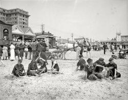 Endless Summer: 1905