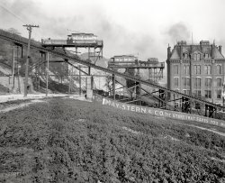 Up the Incline: 1905