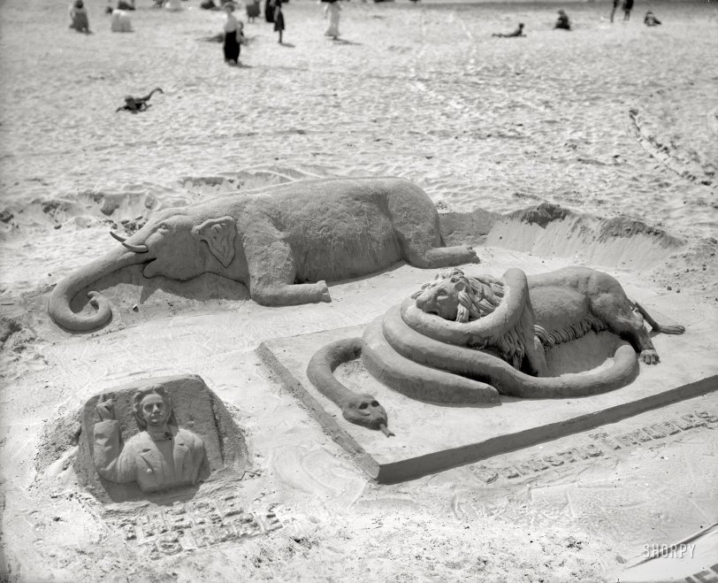 A Lion in the Sand: 1900