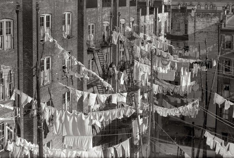 The Washboard Jungle: 1900