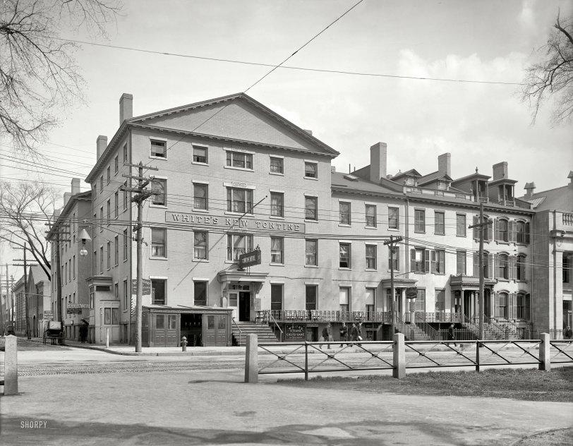 New Tontine: 1900
