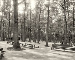 Picnic in the Park: 1905